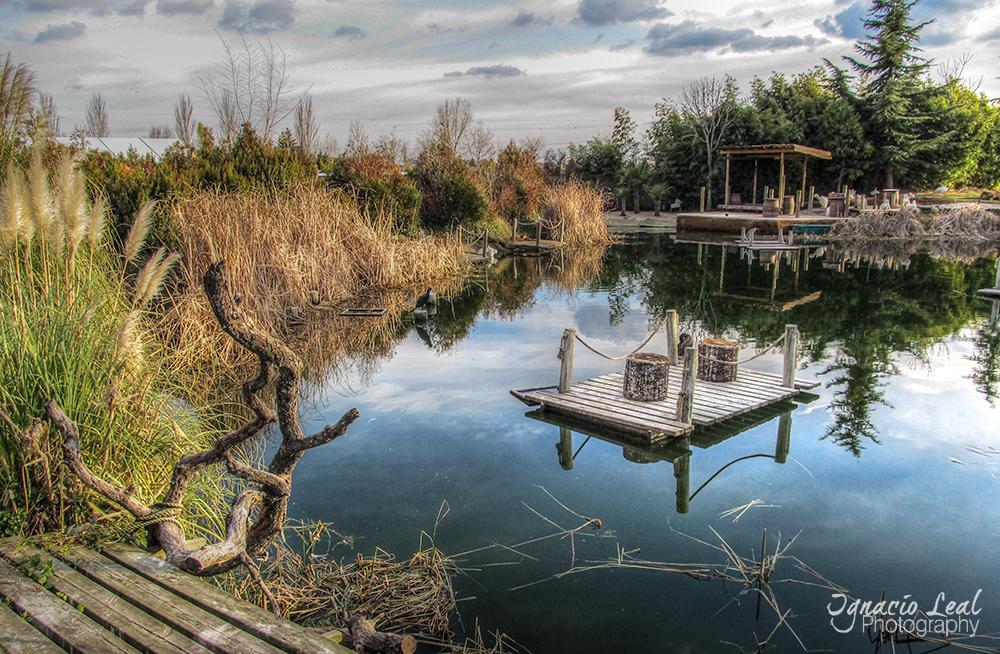 Creando naturaleza – creating natural spaces