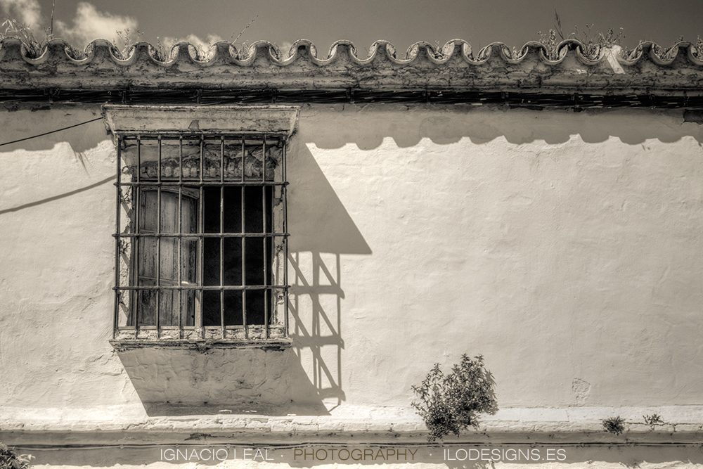 old_window_ventana
