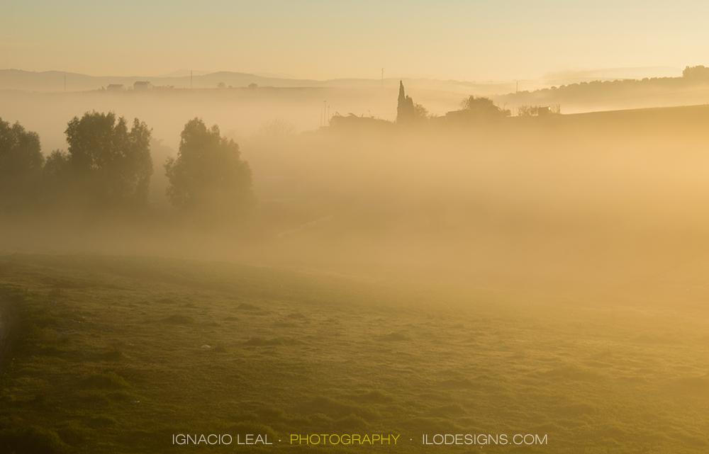 Niebla al amanecer – misty sunrise