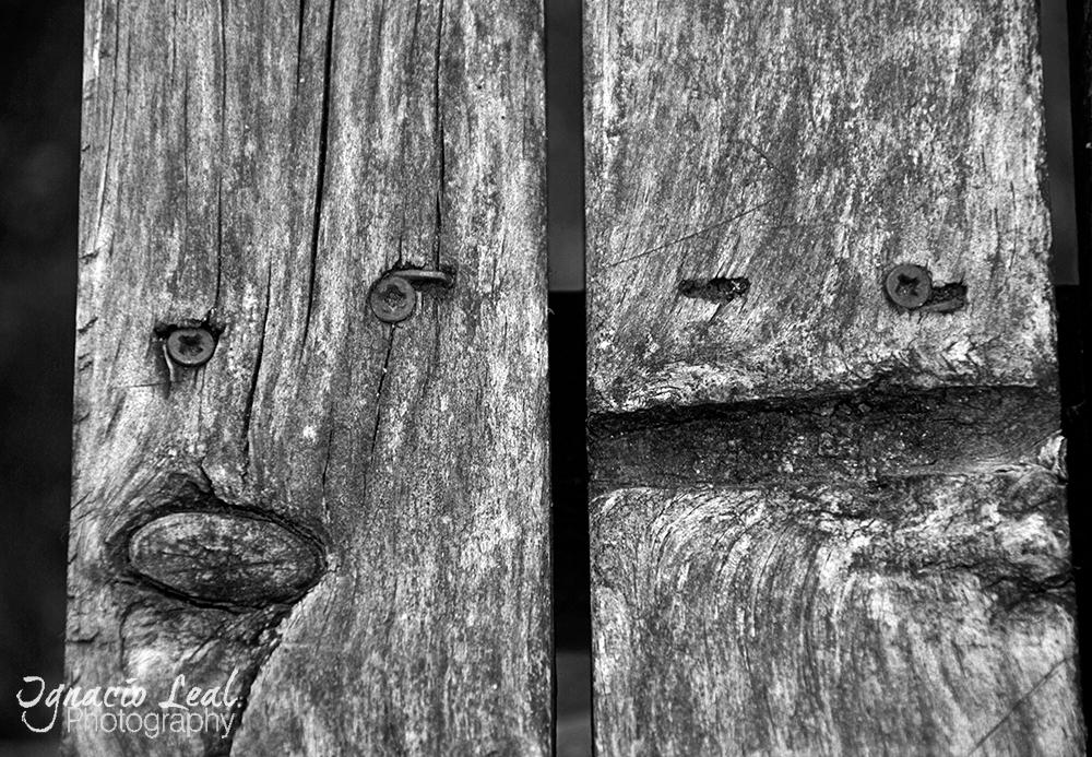 wooden_smiles